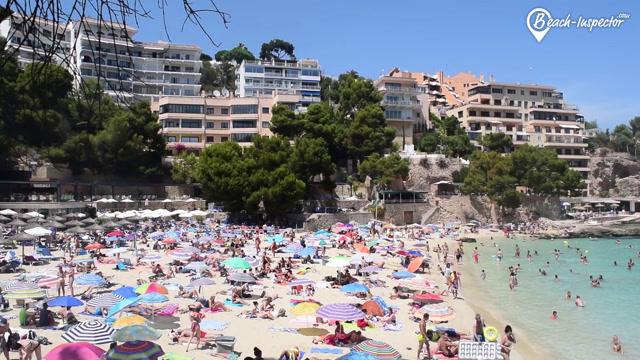 Playa De Illetas Majorca Pictures Videos Insider Tips